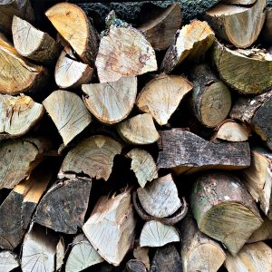 Wooden Logs - Devon Tree Consultancy
