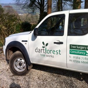 Dartforest - Devon Tree Surgeons & Consultancy