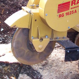 Stump Grinding by Tree Surgeons Dart Forest Tree Works